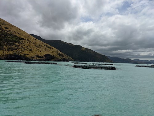 Bay view with a mountain backdrop and cloudy skies at Akaroa, New Zealand