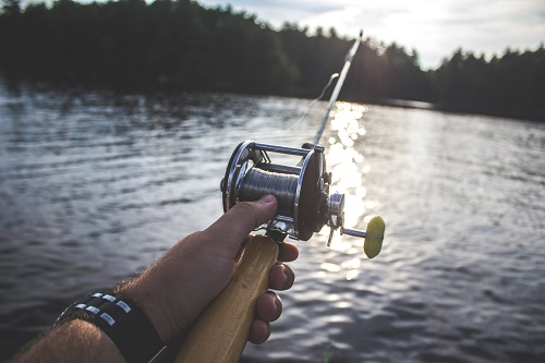Hand holding a fishing rod with a lake and trees in the background