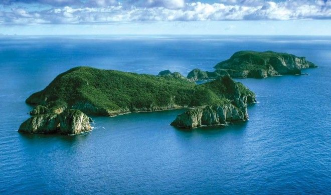 Poor Knights Islands Marine Reserve Tutukaka Coast New Zealand