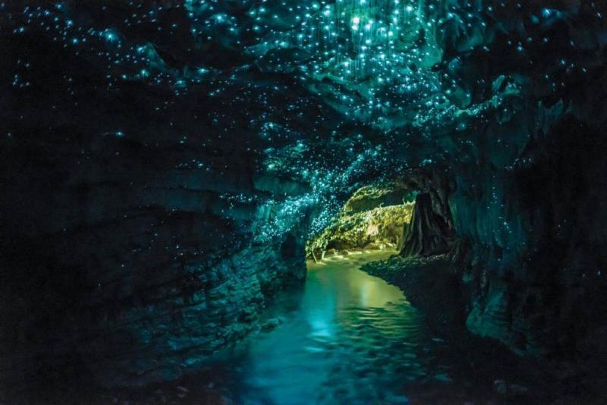 Waitomo Glowworm Caves underground river